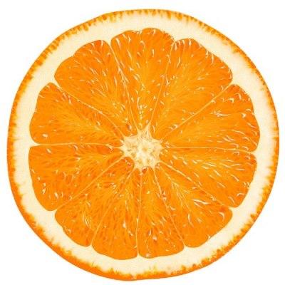 Белково-цитрусовая диета