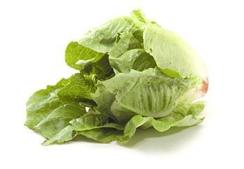 Выращивание салатов на воде – новая технология экологически чистого производства