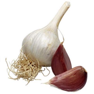 Хотите жить долго – ешьте лук и чеснок