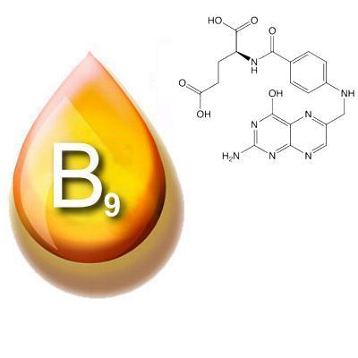 Фолиевая кислота и ее роль в организме человека