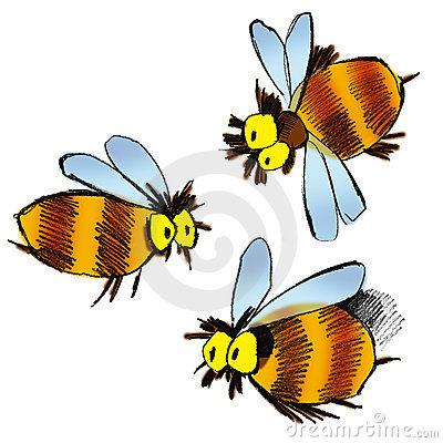 Цветочная пыльца – это целый витаминный комплекс